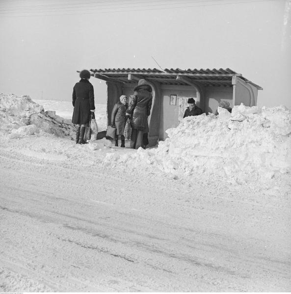 Zima stulecia w Starych Babicach i okolicy (NAC)