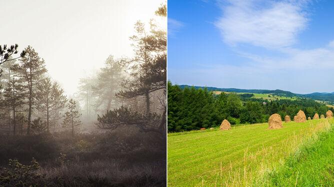 Od mrozów po rekordowe upały. <br />Wrzesień to miesiąc pogodowych kontrastów